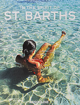 SUMMER HOLIDAYS IN ST. BARTHS in the spirit of stbarths books covers