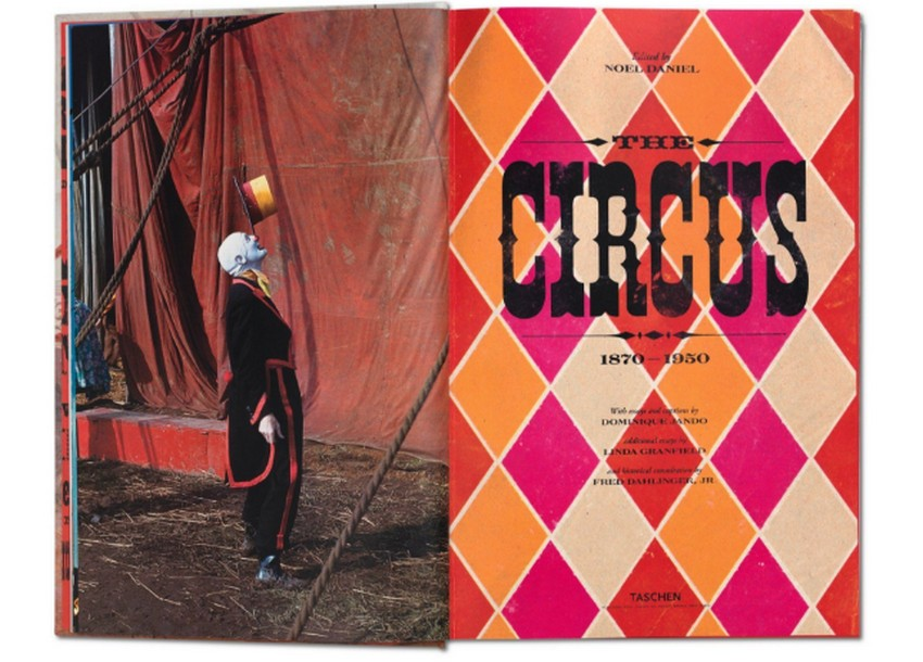 Book Review The Circus 1870s–1950s history and legacy The Circus 1870s–1950s Book Review: The Circus 1870s–1950s history and legacy Book Review The Circus 1870s   1950s history and legacy 2