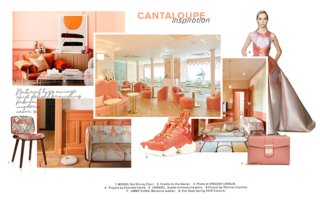 Color Trends 2019: Introduce Cantaloupe Into Your Home Decor cantaloupe Color Trends 2019: Introduce Cantaloupe Into Your Home Decor Color Trends 2019 Introduce Cantaloupe Into Your Home Decor 1
